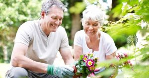 Husband and wife gardening