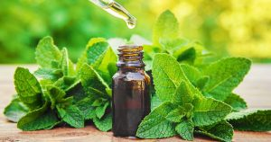 A bottle of Peppermint essential oil for back pain
